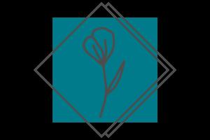 KOLORdsgn - webdesign | Kreatív arculat- és logótervezés